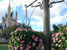 Cinderella Castle Disney Magic Kingdom